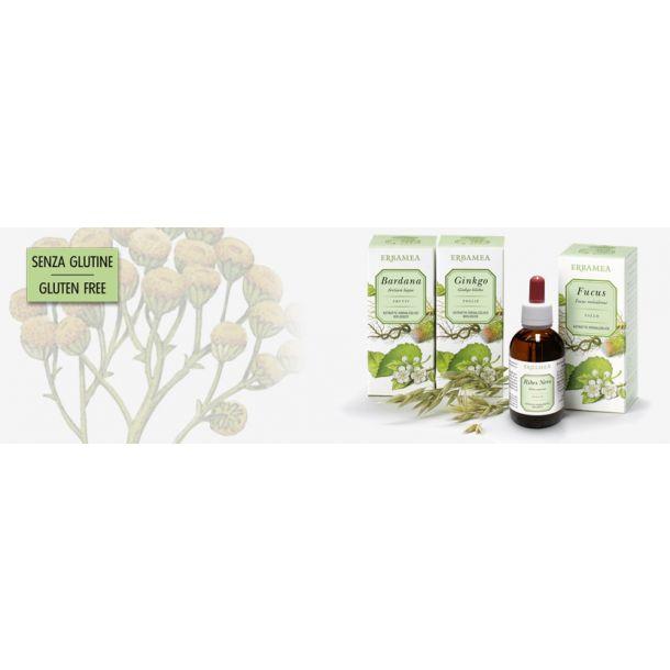 Ribes nero foglie Bio (estratto idroalcolico)