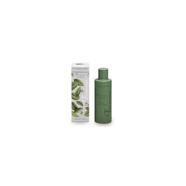 Frescaessenza Profumatore d'Ambiente-100 ml