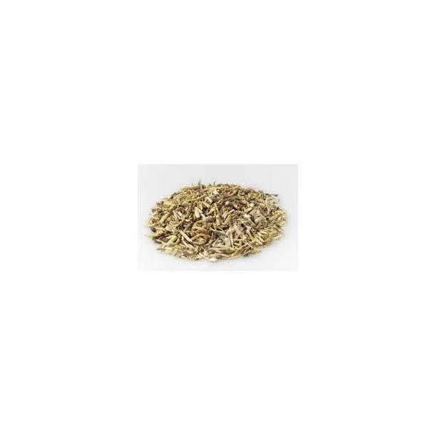 Gramigna - rizoma (100 g)